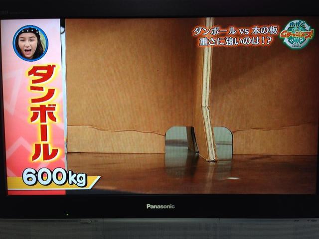 ダンボール椅子強度実験「かがくdeムチャミタス」